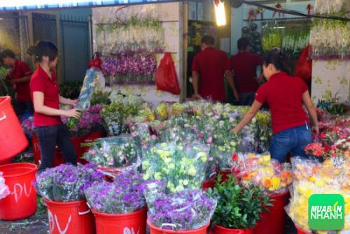 Chợ hoa Hồ Thị Kỷ - Ảnh: Andy Trần